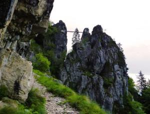 ponte sospeso sopra il sentiero