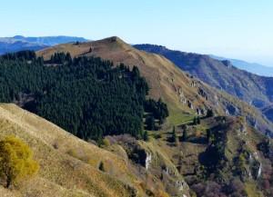 panorama dal Col dei Moi