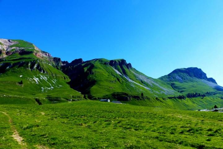 PIANI ETERNI (Alpi Feltrine, Gruppo del Pizzocco) – GIOVEDI 21 LUGLIO 2016