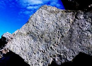impronte di dinosauri al Pelmetto
